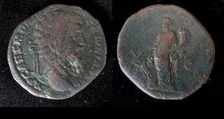 didius-new-320x153 (170)