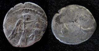 antony quinarius small