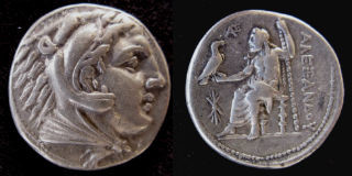 Alexander tetr small