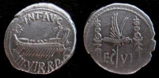 Antony leg IV small