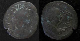 nero alexandria small